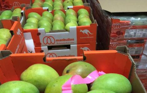 新的区块链技术是节省北方芒果生产商成本的关键
