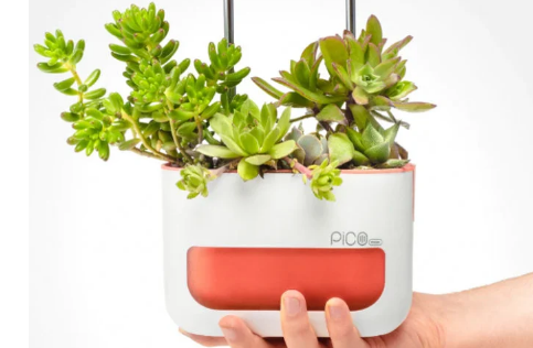 PicoMax室内花园帮助您的植物茁壮成长